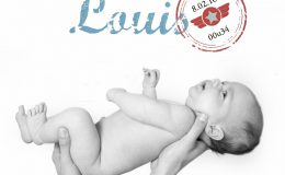 Louis 2